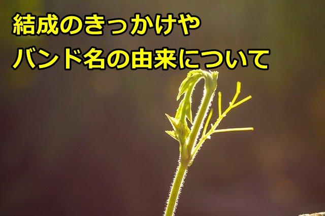 hakubiのメンバーの年齢や出身は?結成のきっかけやバンド名の由来も!4