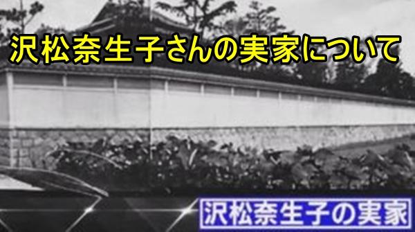 沢松奈生子の実家が豪邸って本当?父の職業は?家系図もすごい!1